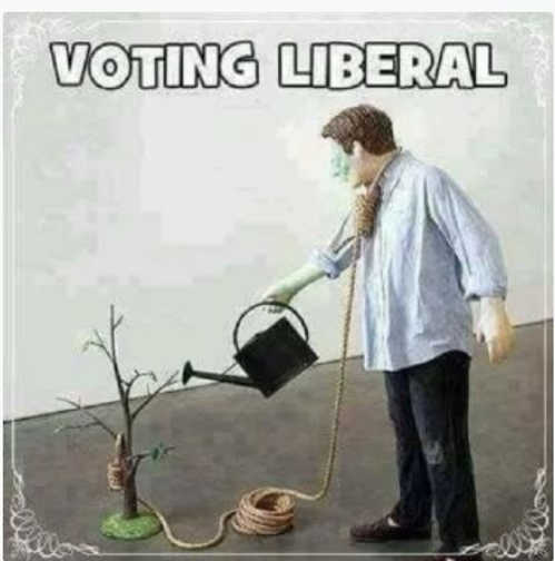 voting liberal planting tree to hang noose