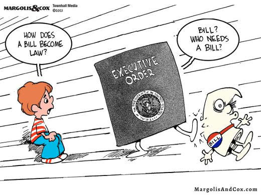 cartoon how bill becomes law executive order