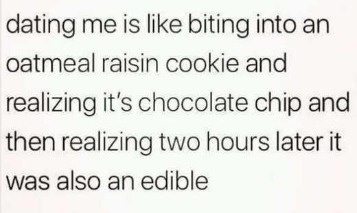 dating me oatmeal raisin chocolate chip edible