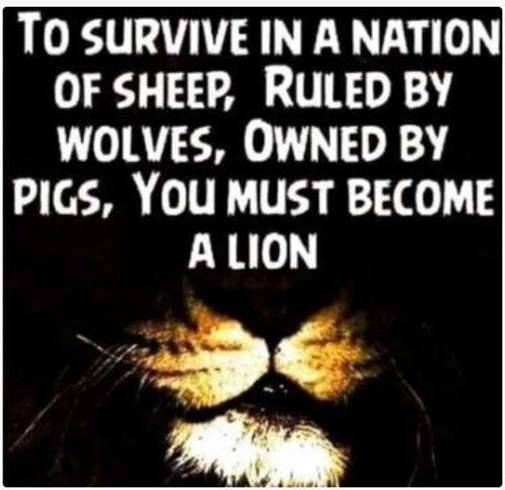 message survive nation of sheep ruled by wolves owned by pigs must become a lion