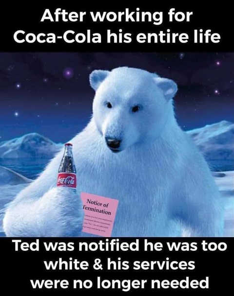 white polar bear terminated by coke ted