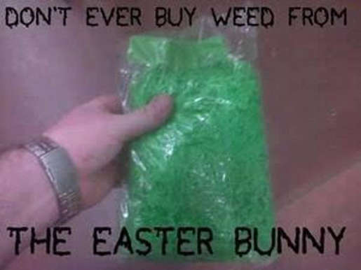 dont buy weed from easter bunny