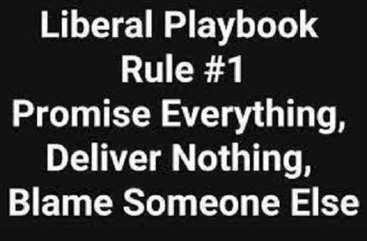 liberal playbook promise everything deliver nothing blame someone else