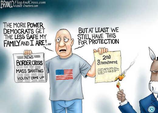 more power democrats less safe democrats burning 2nd amendment