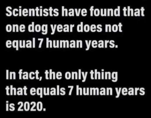 scientists dog year 7 human years false 2020