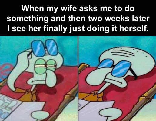 sponge bob look wife asked see doing herself