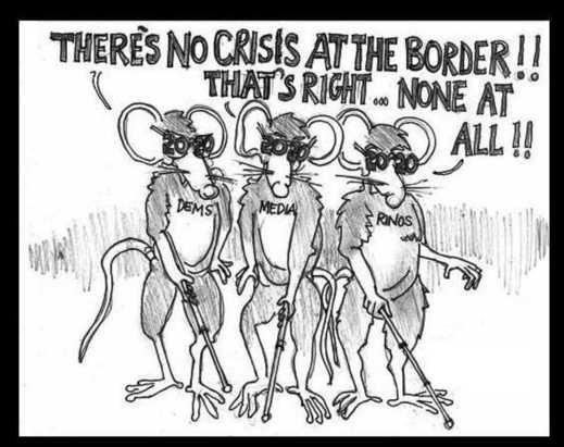 three blind mice no crisis at border democrats media rinos