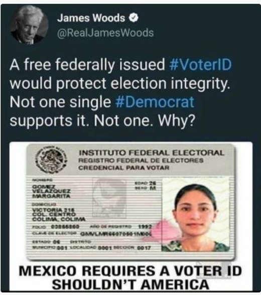 tweet james woods voter id mexico requires not one single democrat