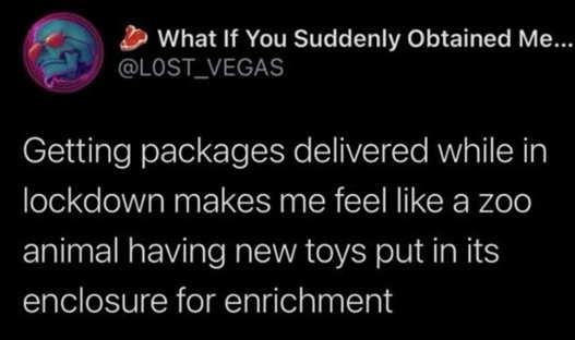 tweet lost vegas getting packages zoon lockdown enrichment