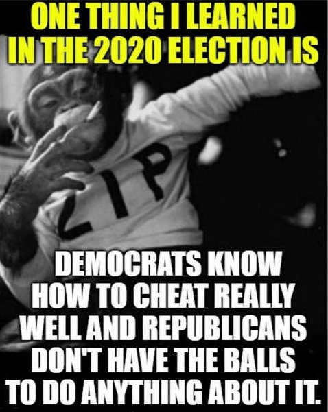 2020 election showed democrats know how to cheat well republicans dont have balls to do anything