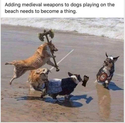 adding medieval weapons dogs beach needs to be thing