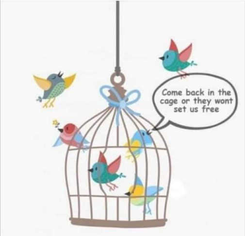 bird cage come back in so they will set us free
