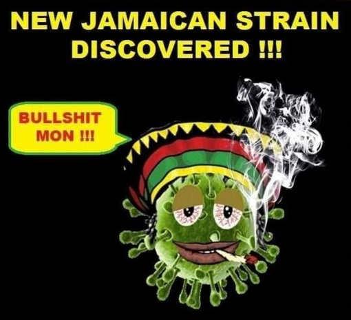 new jamaican covid strain bullshit mon