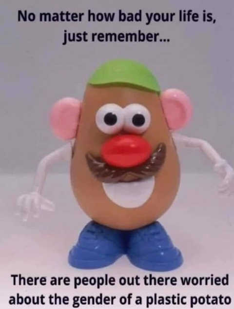 no matter how bad life is remember people worried about gender of plastic potato