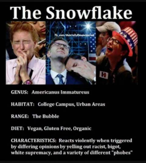 snowflake college campus racist ranting