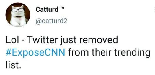 tweet twitter removed expose cnn catturd