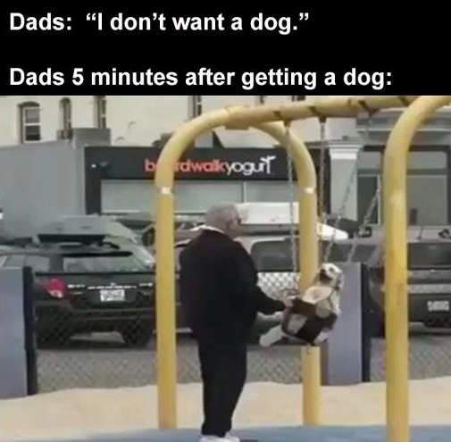 dad doesnt want dog later swingset
