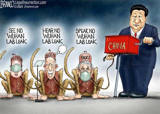 media biden fauci china see hear speak no evil