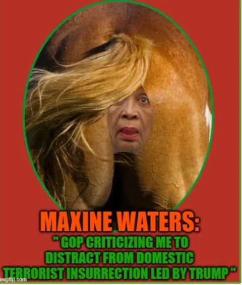 quote maxine wates gop critize me distract trump insurrection