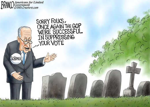 chuck schumer graveyard sorry gop successful in suppressing your vote