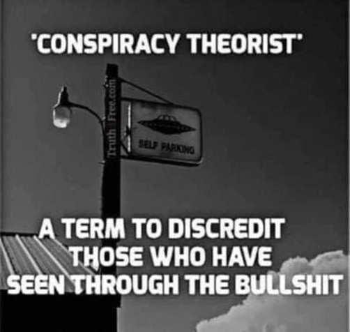 conspiracy theorist term used discredit those seen through bullshit