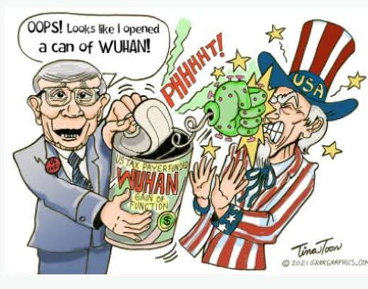 fauci taxpayer funded wuhan gain of function