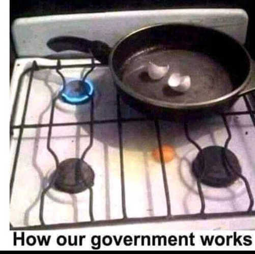 how government works egg missing pan