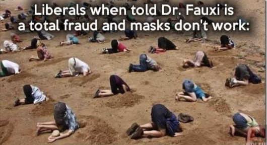 liberals head sand dr fauci fraud masks dont work