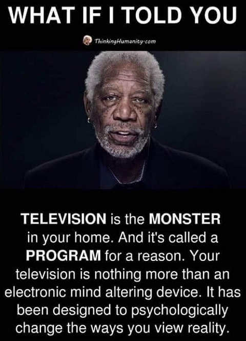 quote television monster in your home program change psychologically way view reality