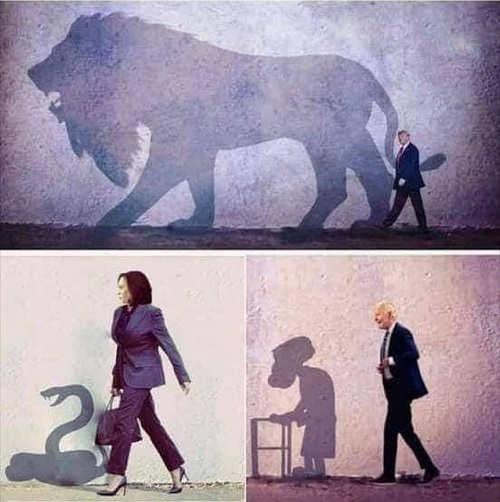 trump shadow lion kamala snake joe biden old man