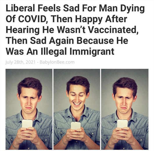 babylon bee liberal said covid vaccinated illegal immigrant