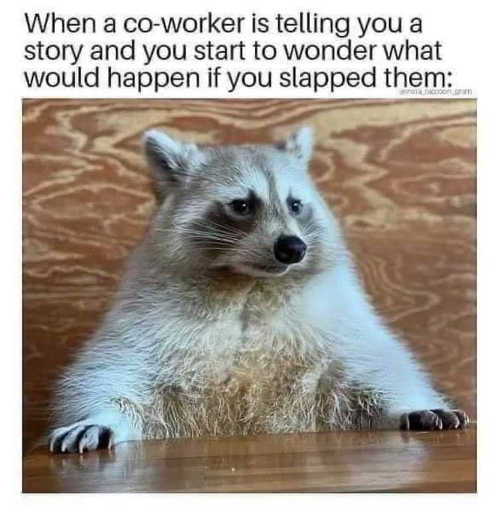 coworker telling story wonder if you slapped them racoon