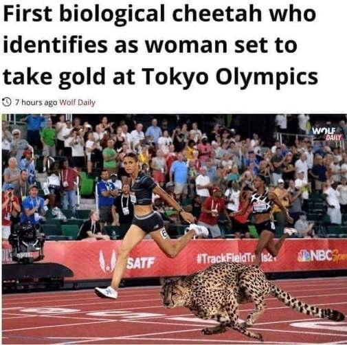 first biological cheetah identifies as woman set to take gold
