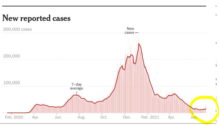 graph_covid_cases_daily_july_2021