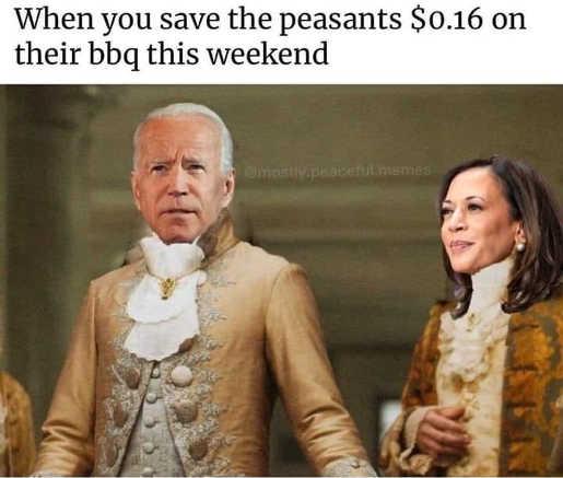 joe biden kamala harris when you save the peasants 16 cents on bbq