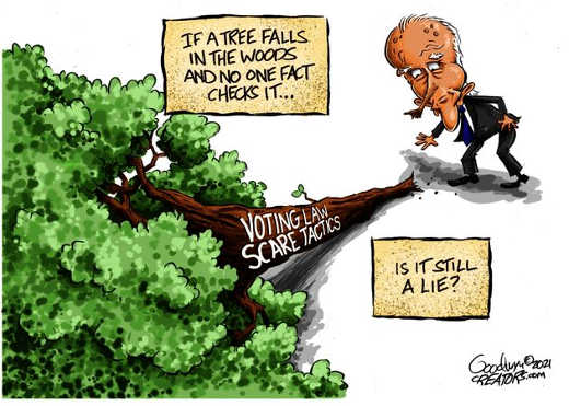 tree falls in wood no one fact checks voting law scare tactics lie