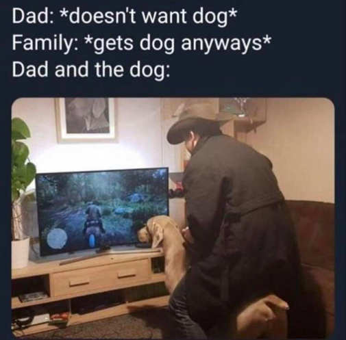 dad family doesnt want dog riding horse video game