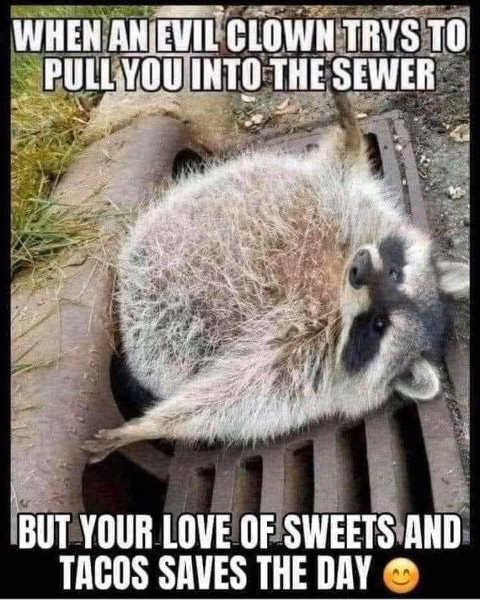 evil clown raccoon sweer sweets tacos