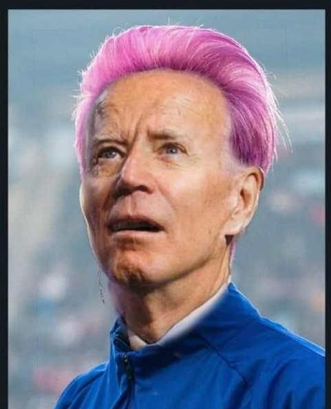 joe biden megan rapinoe pink hair