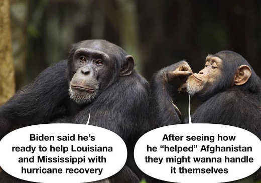 monkeys biden louisiana mississippi hurrican joe biden help afghanistan