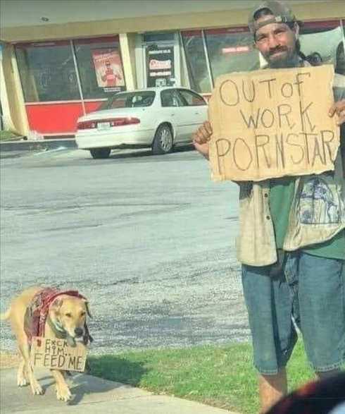 sign out of work porn star dog feed me