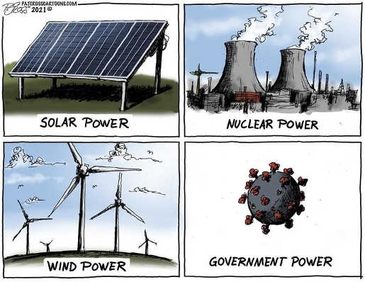 solar nuclear wind power covid government
