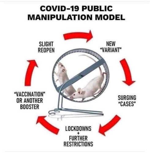 covid 19 manipulation model variant vaccination lockdowns cases slight reopen