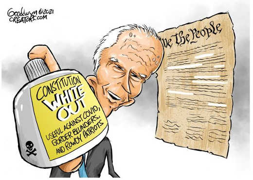 joe biden constitution white out covid border rowdy patriots