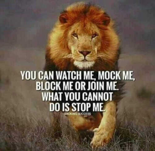 message lion can watch mock block join me cannot stop me