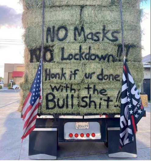 truck honk if tired of covid lockdowns masks bullshit