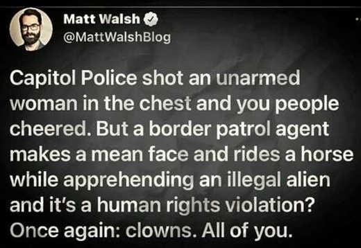 tweet capitol police shot unarmed women border patrol mean face horses
