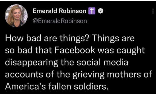 tweet emerald robinson facebook erase social media grieving mothers
