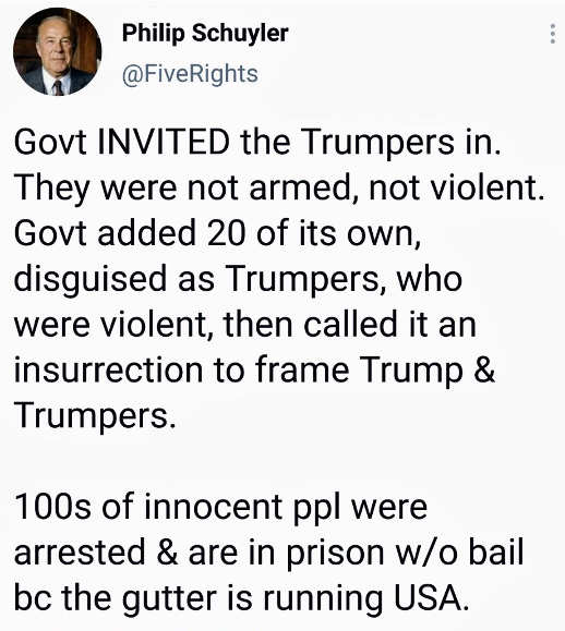 tweet schulyer government invited trumpets in planted fbi gutter running usa