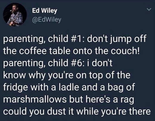 tweet wiley couch refigerator jumping kids